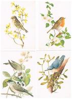 CP LOT DE 20 Suisse Oiseaux - Zonder Classificatie