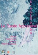 CC °_ 32 Auch - Le Geste Apprivoisé - Stages De Danse - 2006 - Tanz