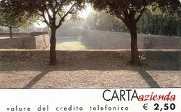*CARTA AZIENDA 2° Tipo: RAS NORGA - Cat. 294* - NUOVA (MINT) (FT) - Unclassified