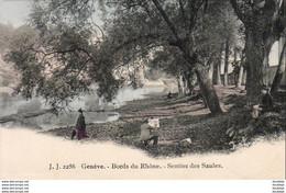 SUISSE GE GENÈVE Bord Du Rhône Sentier Des Saules  ....... Avec Un Peintre Et Son Chevalet - GE Geneva
