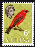 ST HELENA - 1961-1965 QEII DEFINITIVE 1965 6d STAMP CHALK PAPER MNH ** REF C SG 181a - St. Helena