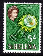 ST HELENA - 1961 QEII DEFINITIVE 5/- FLOWER STAMP FINE MNH ** SG 187 - St. Helena