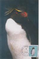 Carte  Maximum  1er  Jour    TAAF    Gorfou  Sauteur    2006 - Pinguine