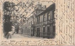 Kalisz - Polonia