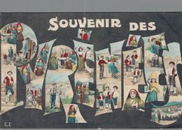 G0611 - SOUVENIR DES PYRENEES - D64 - Otros Municipios