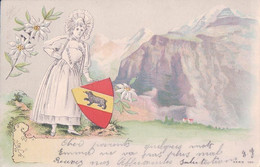 Bernoise En Costume, Edelweiss Et Armoirie, Litho Gaufrée (120) - BE Berne
