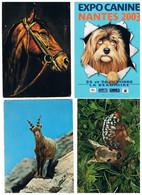 CPSM LOT 48 CARTES D ANIMAUX - 5 - 99 Postcards