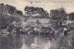 A Woluwe St Pierre Avenue De Tervueren Dans Le Parc De Woluwe - Woluwe-St-Pierre - St-Pieters-Woluwe