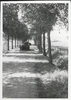 Belgique. Province De Namur. Denée, Photo 1940: Chars Français B1Bis Abandonnés. - Lieux