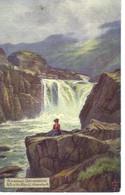 Peinture Pittoresque Rivière Rheidol Pays De Galles (*) - Non Classificati