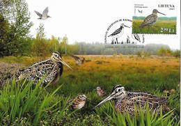 2007 Lituanie Carte Maximum - Storks & Long-legged Wading Birds
