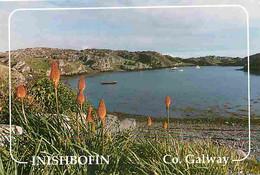 Irlande - Galway - Inishbofin - View From Day's Hôtel - Carte Neuve - Ireland - CPM - Voir Scans Recto-Verso - Galway