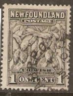 Newfoundland  1932 SG 222 1c Grey   Fine Used - 1908-1947