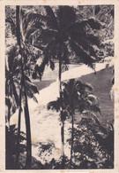 IONYL . OCEANIE - Publicité