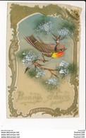 CARTE CELLULOID  Avec Dessin D' Oiseau   ( Recto Verso ) - Other