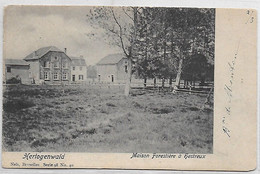 [ LIE 1 ]   Hertogenwald    --    (  7  ) Maison Forestière à Hestreux - Eupen