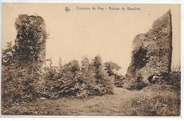 [ LIE 2 ]  Huy    --    (  23  )   Ruines De Beaufort - Huy