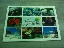 SOUVENIR DES SEYCHELLES - MULTI-VUES - EDITIONS JULIEN PALMYRE - 2015 - - Seychelles