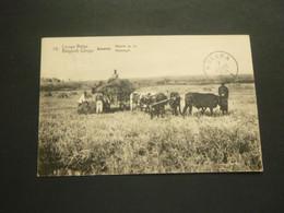 Congo Belge ( 379 )  Belgisch Kongo   Entier Postal   Postwaardestuk    BUKAMA - Congo Belge - Autres