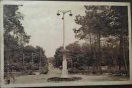 """Cpa, Pyla-sur-Mer, 33 Le Square Daniel Meller Et La Route De La Teste """" Beaux Paysages De France, La Côte D'Argent"""", - Autres Communes"""