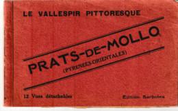 Pyrénées Orientales  Le Vallespir Pittoresque PRATS DE MOLLO Carnet De 12 Vues - Otros Municipios