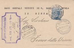 CARTOLINA POSTALE 1922 C.20 TIMBRO SIENA FOIANO DELLA CHIANA AREZZO (XM901 - Marcofilía