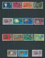 Barbados 1965 Marine Definitives Set Of 14 & Later 4c  Surcharge FU - Barbados (...-1966)