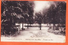 X68299 ROUFFACH 68-Haut Rhin Pensionnat SAINT-JOSEPH St Terrasse Sous Bois 1930à René SCHOLLER Ste-Marie-aux-Mines - Rouffach