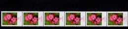 Bund 2529 R Blumen Kartäusernelke 6er Streifen Postfrisch MNH ** Neuf - Rollo De Sellos