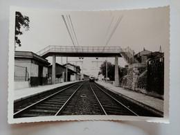 Micheline à Quai En Gare De Saint Vallier Du Rhône Drome Photo Verger Tournon Sur Rhône - Trenes