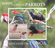Tonga 2020, Parrots 4val In Block - Tonga (1970-...)