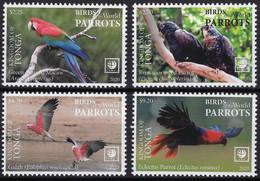 Tonga 2020, Parrots, 4val - Tonga (1970-...)