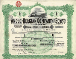 Titre Ancien - Anglo Belgian Company Of Egypt  Limited - Titre De 1921 - Déco - - Railway & Tramway