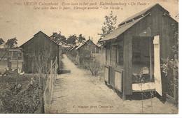 33 Calmpthout Heide Zicht In Het Park Kiekenkwekerij De Heide Uitg Hoelen 8946 - Kalmthout