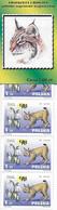 Pologne Carnet De 5 Timbres 2001 - Non Classificati