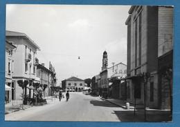 MINERBE VIA ROMA VG. 1957 VERONA N°A327 ANNULLO GULLER CON SBARRETTE - Verona