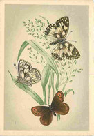 Animaux - Papillons - Papillons Diurnes D'Europe - Série 2 - 17a - Demi Deuil - Melanargia Galatea L - 17b - More Ou Neg - Papillons