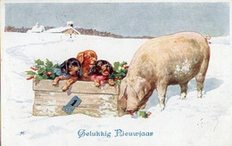 Illustrateur Feiertag - BKWI 3101-3, Boite 3 Teckel Et Cochon - Feiertag, Karl