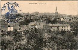 61mks 1147 CPA - MIRECOURT - VUE GENERALE - Mirecourt