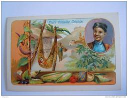 Chromo Notre Domaine Colonial Tonkin Fruits Form. 7 X 10.5 Cm - Sonstige