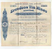 Cx10 D) Portugal Bragança MINAS ESTANHO ERVEDOSA THIN MINES Stock Bond Action Titre Mines 30x27cm - Miniere