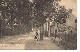 40 Calmpthout Heide Calmpthoutschen Steenweg   Uitg Hoelen 9145 - Kalmthout
