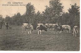 48 Calmpthout Zicht Der Landgoederen Markgraaf Uitg Hoelen 3588 - Kalmthout