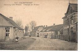 52 Calmpthout Steenweg Naar Wildert. Hoelen 9057 - Kalmthout