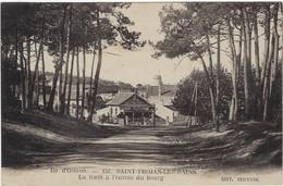 17 Saint Trojan Les Bains - Ile  D'oleron - La Foret A L'entree Du Bourg - Ile D'Oléron