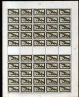 Feuille Complète De 50 Timbres N°PA 8A, Neuf**, MNH - Aéreo