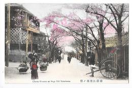 YOKOHAMA -  Cherry Blosson At Noge Hill - Cerisiers En Fleurs Au Japon   -  L  1 - Yokohama
