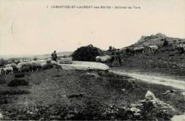 48 : La Bastide Saint Laurent Les Bains - Dolmen De Tors - Altri Comuni