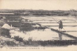 LES MARAIS SALANTS: La Récolte Du Sel - Craft