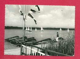 C.P. Virelles =   Lac  :  Embarcadère - Chimay